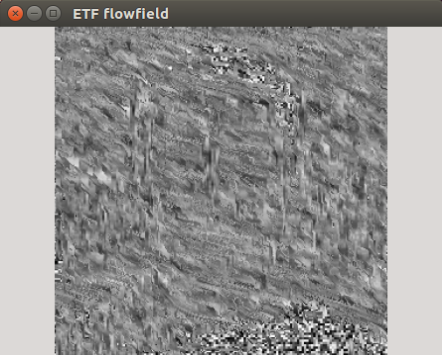 Flowfield wrong