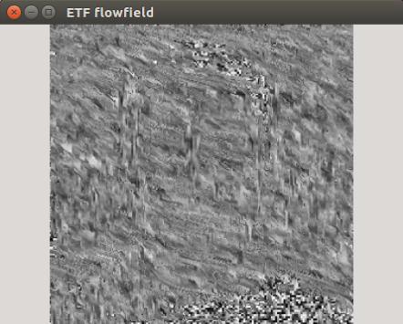 Flowfield wrong